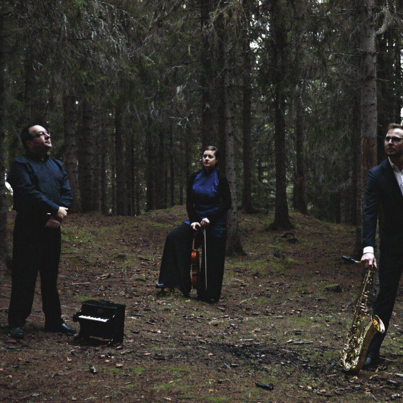 Trio Brax 2 farge photo Car l Christian Lein Størmer